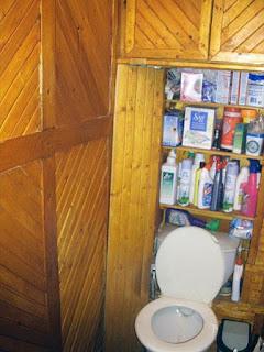 Фото отделка туалета деревом