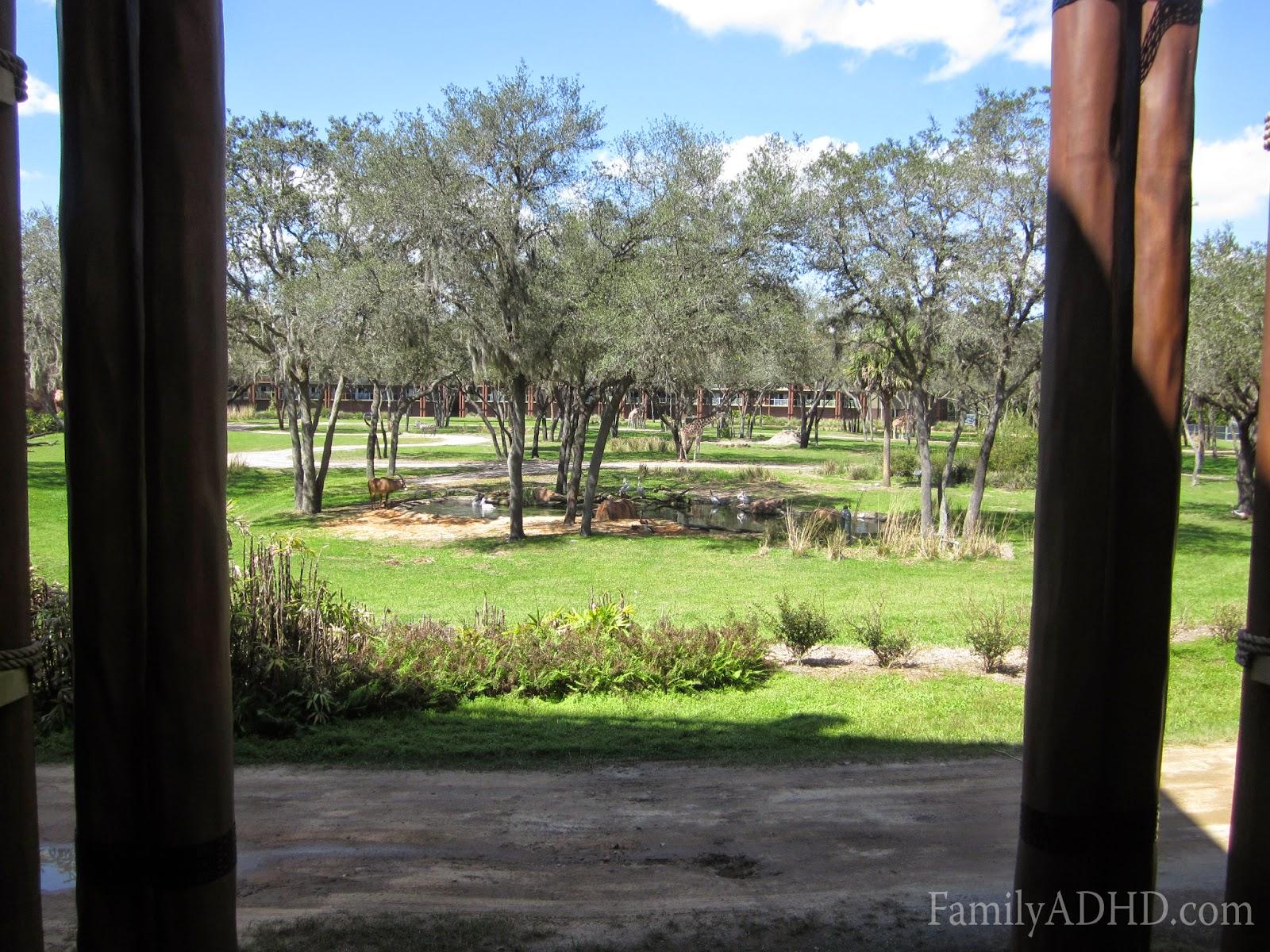 disney's animal kingdom lodge resort review