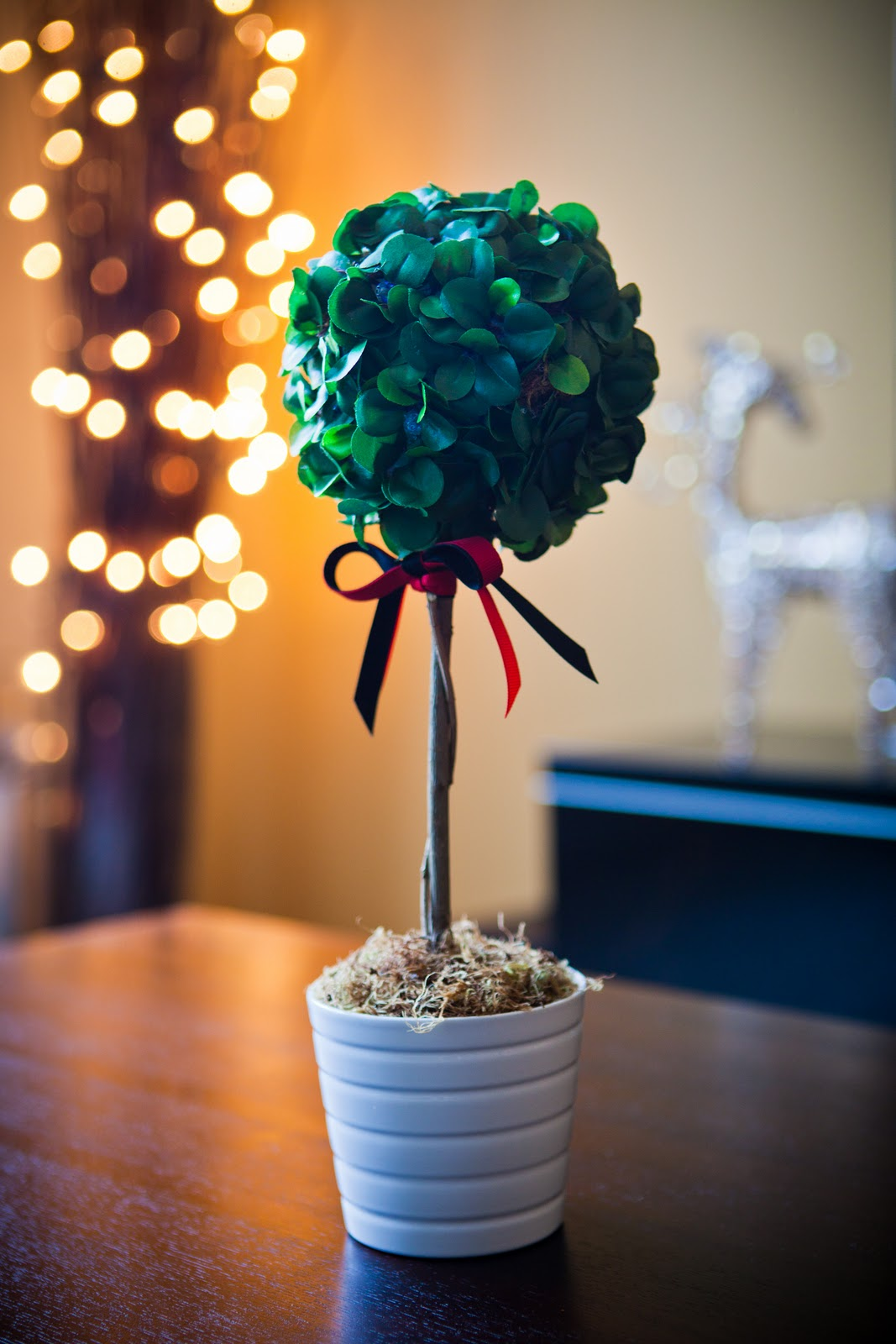 diy tall boxwood topiary inspired by design darling ballard thanks for stopping by