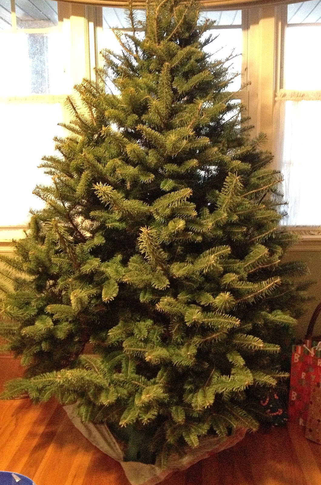 From The Hive It 39 S Alive Christmas Tree What Have You