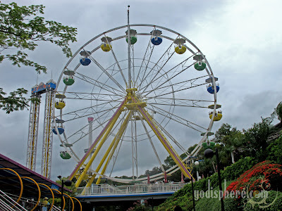 Towering Ocean Park Ferris Wheel