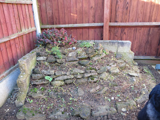 Rockery in winter.