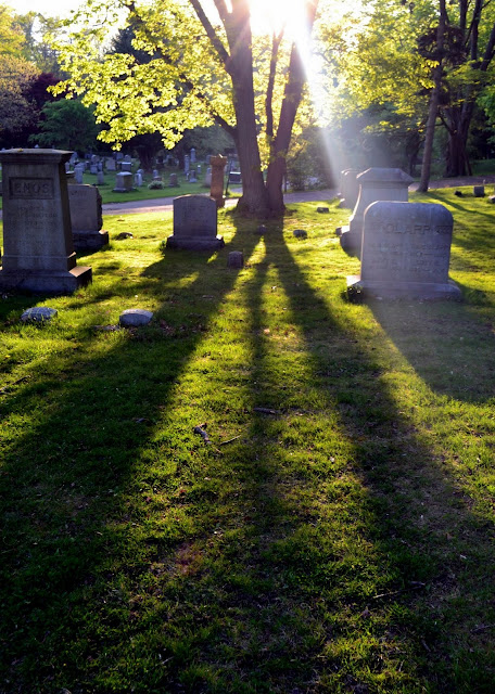 greenlawn shadows salem massachusetts