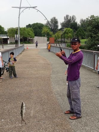 Tarpon or Hai Leng 大眼海鲢 Caught by Ah Ling At Woodland Jetty on 13th April 2014.