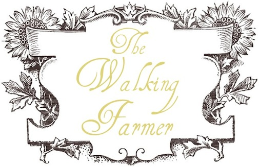 the walking farmer