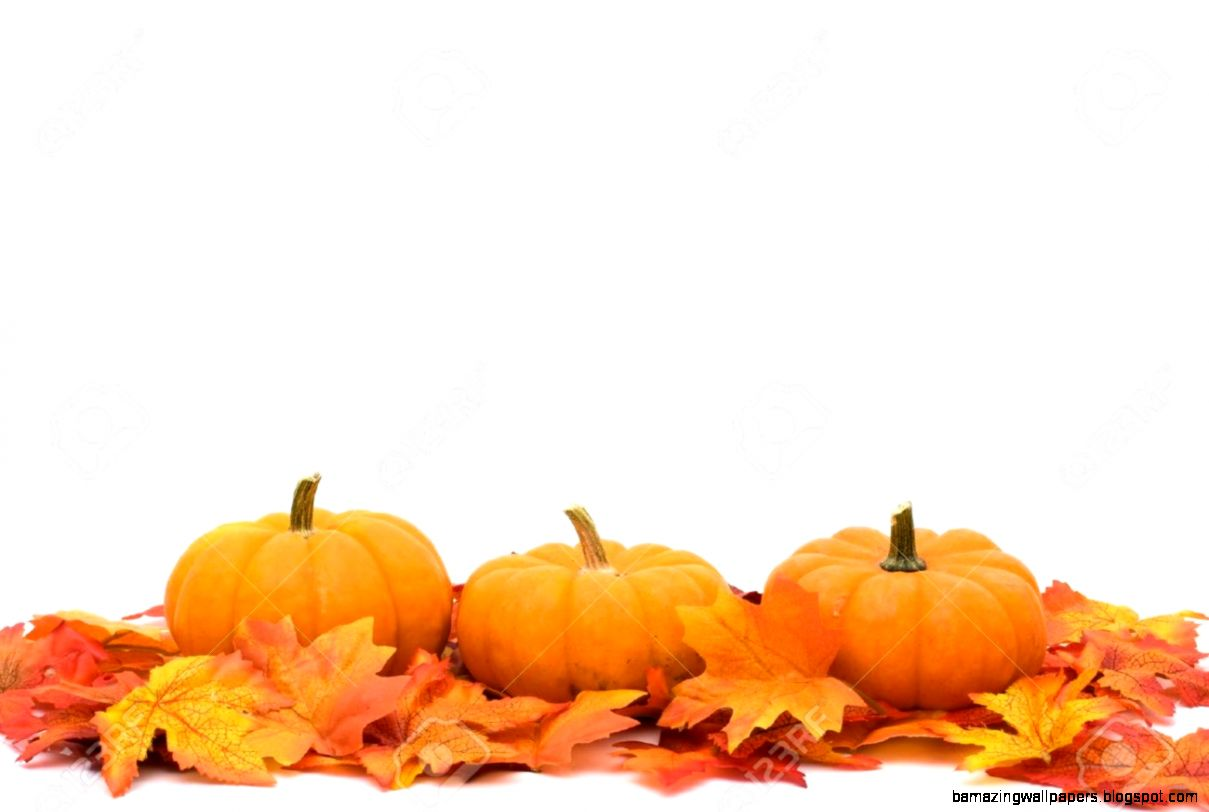 Fall Leaves With A Pumpkin Border At The Bottom Autumn Background