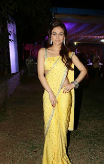 Actress Aksha Pardasany Latest Pictures in Yellow Saree at Dr Salim Audio Launch  47