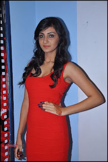Actress Neelam Upadhyaya Picture Gallery at Action 3D Movie Premiere Show  0010.jpg