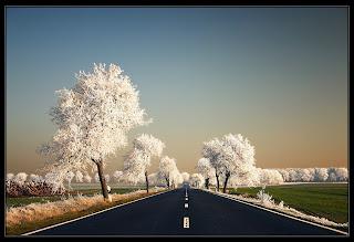 Gryfino, Poland in winter