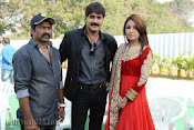 Srikanth New Movie launch Photo Gallery-thumbnail-11