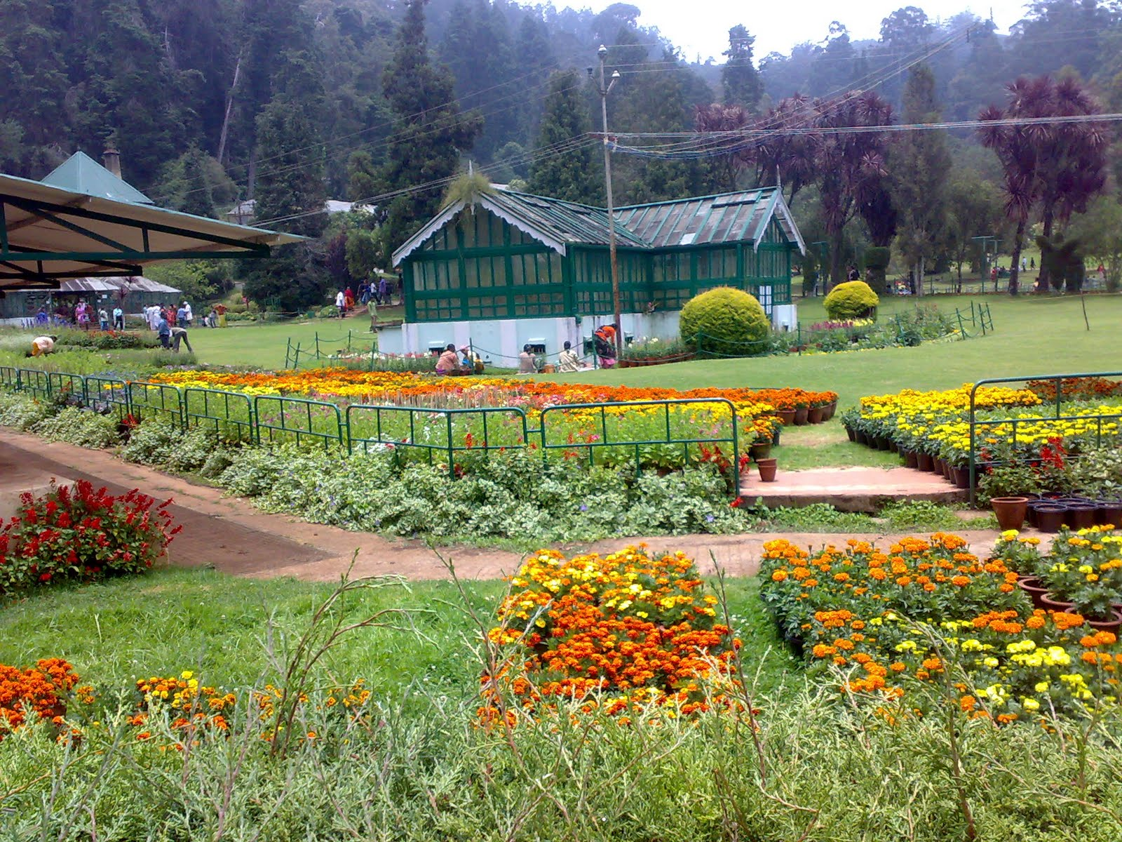 Ooty queen of hill stations tours n travel for Botanical garden timing