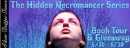 Hidden Necromancer