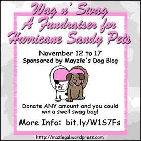 Wag 'N' Swag Fundraiser