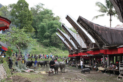 Torajan Funeral at To'bubun