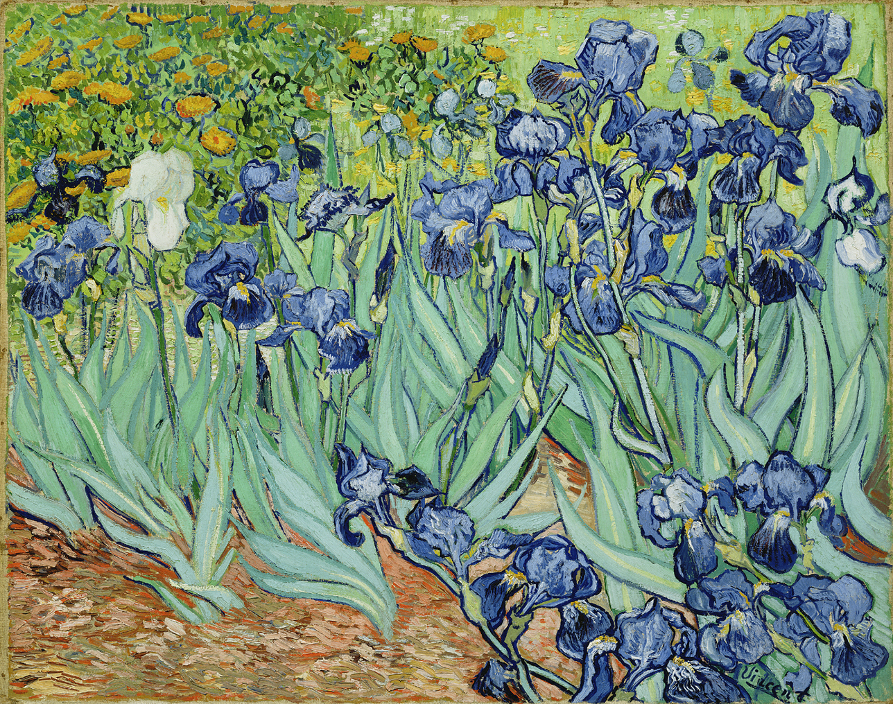 The fine art diner van gogh the spiritual struggle of irises notice how the irises seem to be blown over on the left side of the canvas it symbolizes the holy spirit breathing upon us and how it seems that when izmirmasajfo