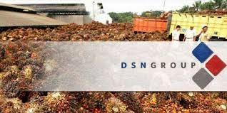 Loker Baru Resmi DSN Group 2015