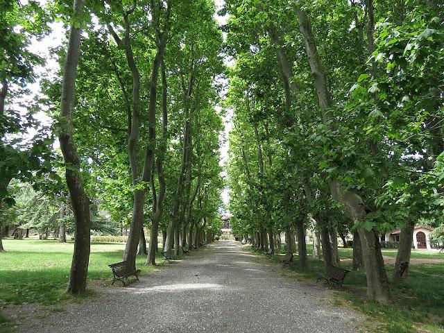 Park of Villa Fabbricotti, Children's Library, Livorno