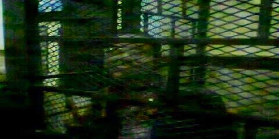 ماهينور المصري باسمة في حجز قسم المنشية