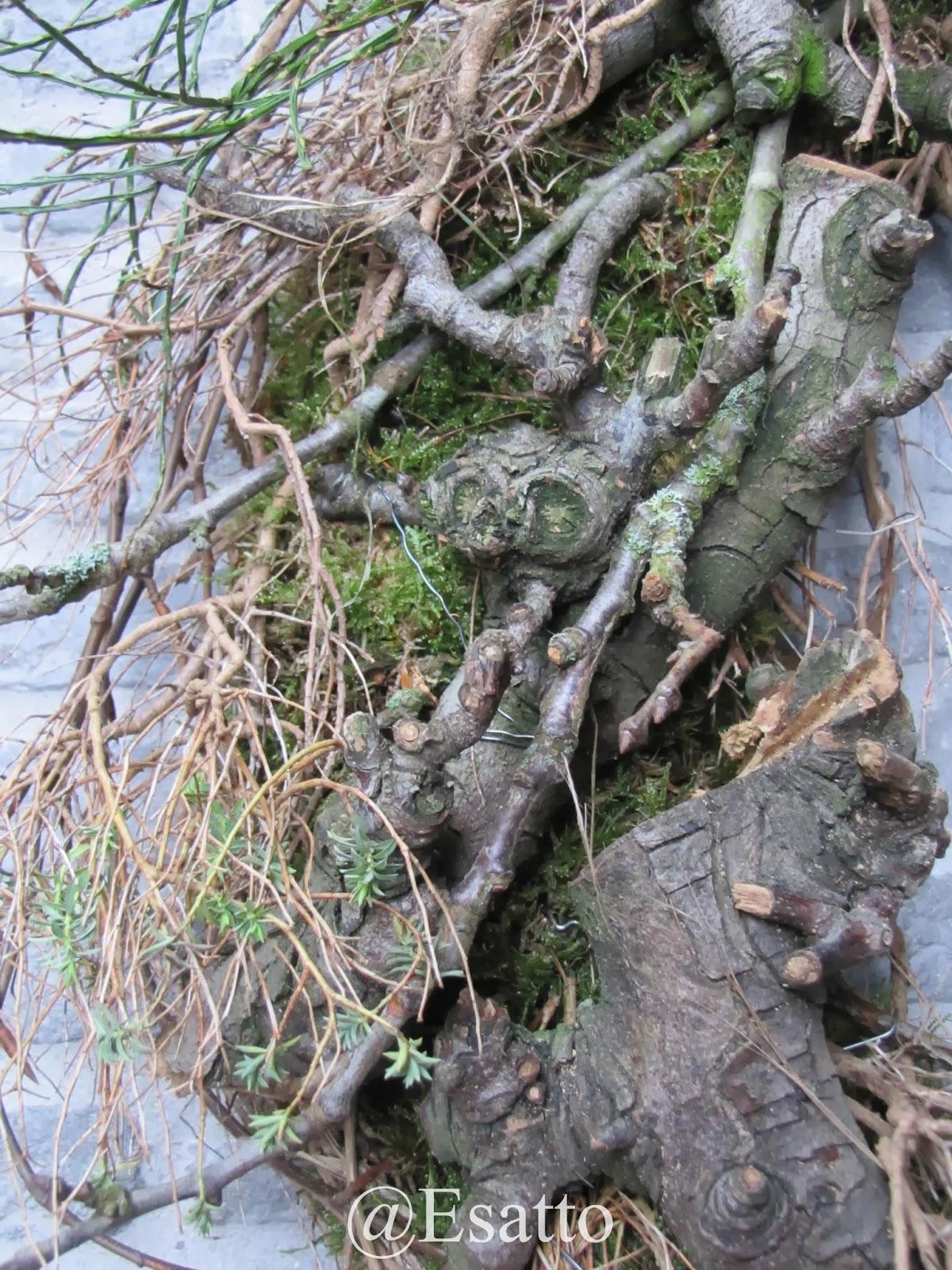 Esatto by ravensbergen: bijna voorjaar...!