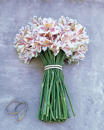 Martha stewart flowers arrangements for Martha stewart floral arrangements