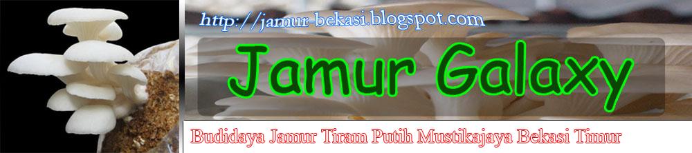 Pusat Budidaya Jamur Tiram Online (Bekasi)