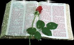 NA BÍBLIA SE ENCONTRA TODAS AS  PROMESSAS  QUE DEUS NOS RESERVOU,SÃO  3.565 PROMESSAS  ...