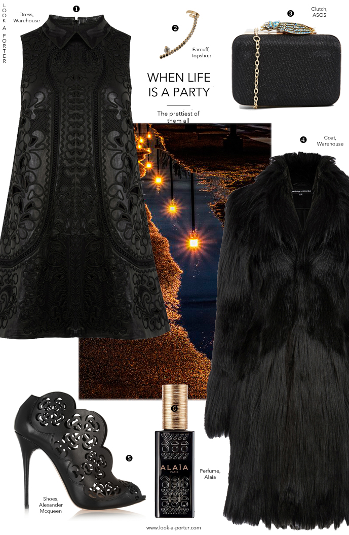 An embroidered leather dress, a beautiful pair of laser cut ankle boots and the softest fur coat to keep warm... I dare you not to fall in love with this all black outfit. Via www.look-a-porter.com style & fashion blog