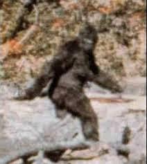 Bigfoot Zombie: la vera storia in un film