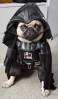 darth-vader-dog-costume.jpg