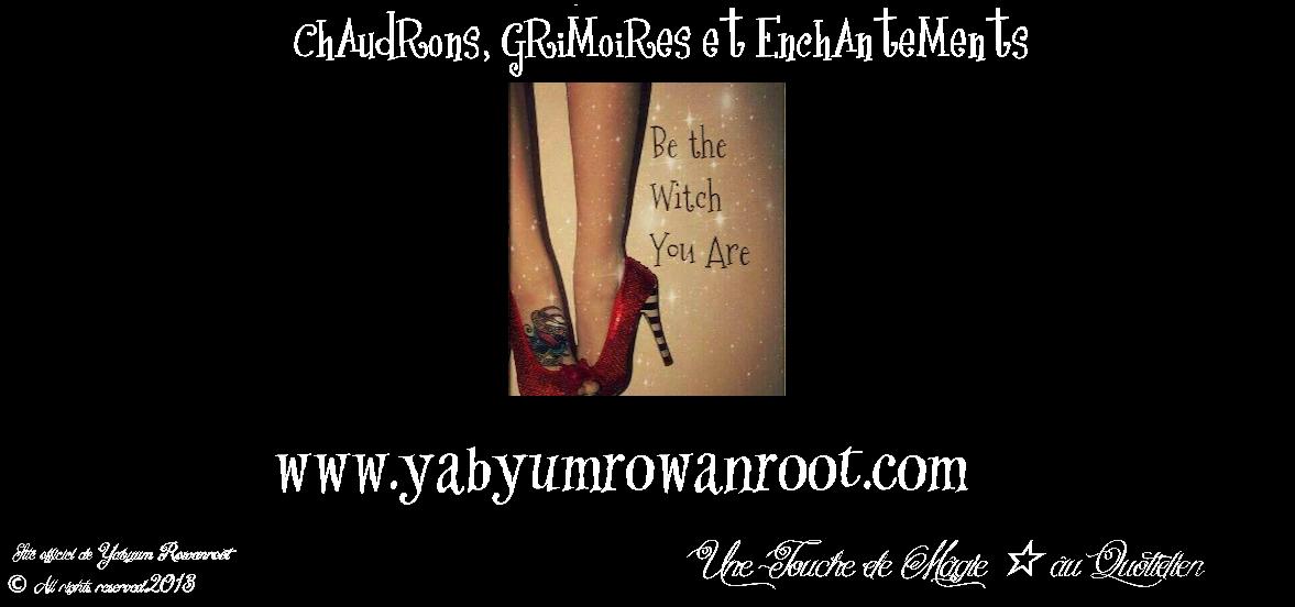 Chaudrons, Grimoires et Enchantements ..Une Touche de Magie ☆ au Quotidien