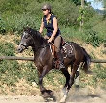 AU GALOP SUR ST-PHONI