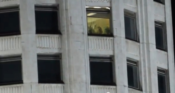 секс в окна