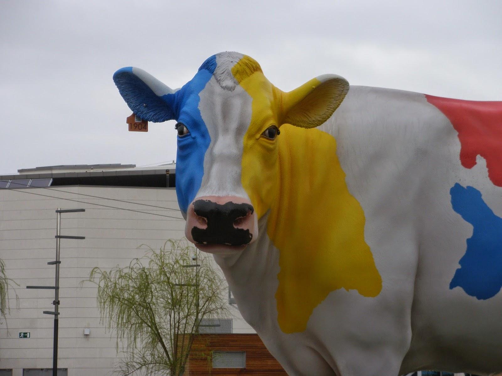 Vaca mirando fijamente
