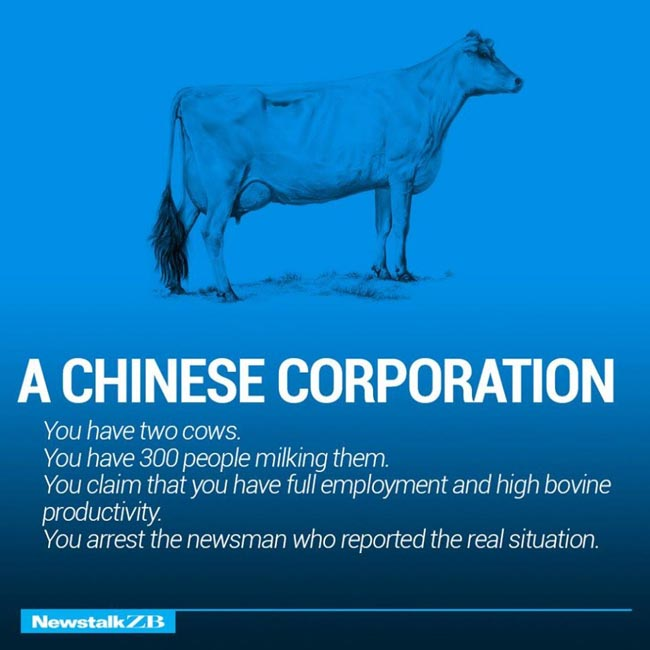 Two Cows Explain The World Economy Better Than Any Professor