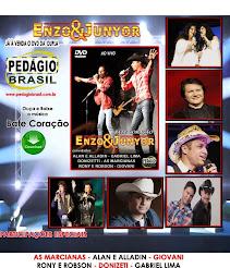 CD. DVD  A VENDAS....SERTANEJOS