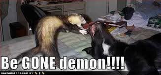 be gone demon, decoding demon dream, demon dog