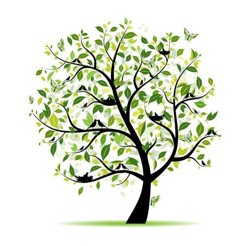 Help Us Plant Trees!