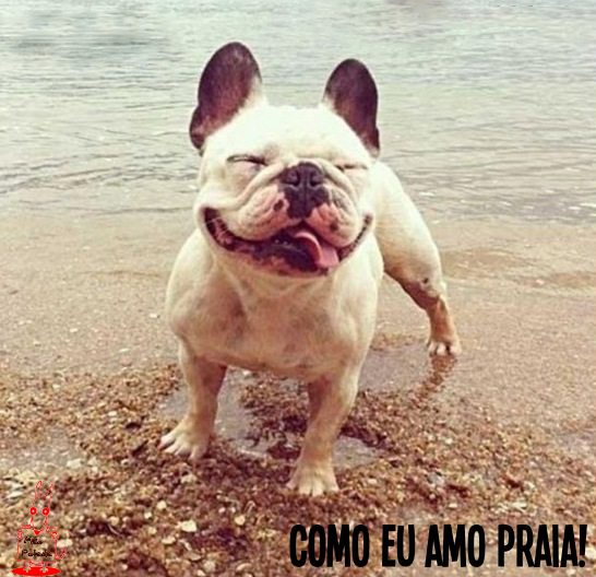 meme Como eu Amo a Praia