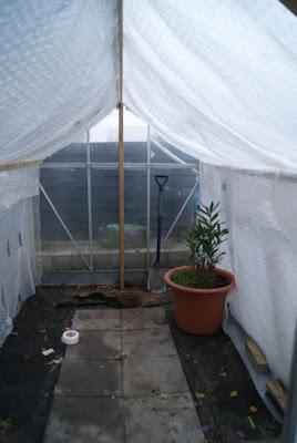 Isolering af drivhus