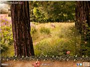 chơi game tìm hoa