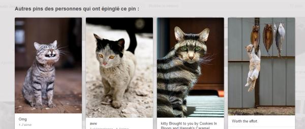 pinterest, pins, punaise, nouveau design, nouveau look, new look,
