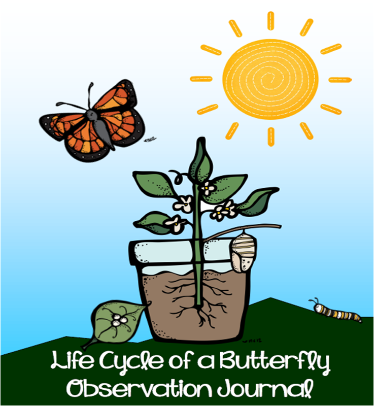 http://www.teacherspayteachers.com/Product/Life-Cycle-of-a-Butterfly-Observation-Journal-126386