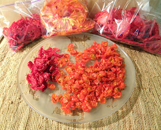 5 Varieties of Dried Tomatoes on Plate and in Bags