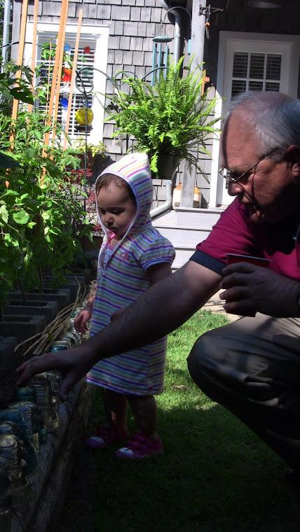 Exploring Garden