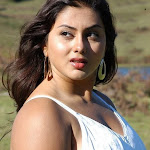 Namitha armpit show