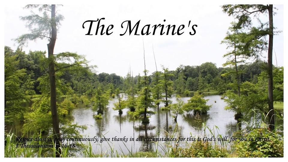 The Marine's