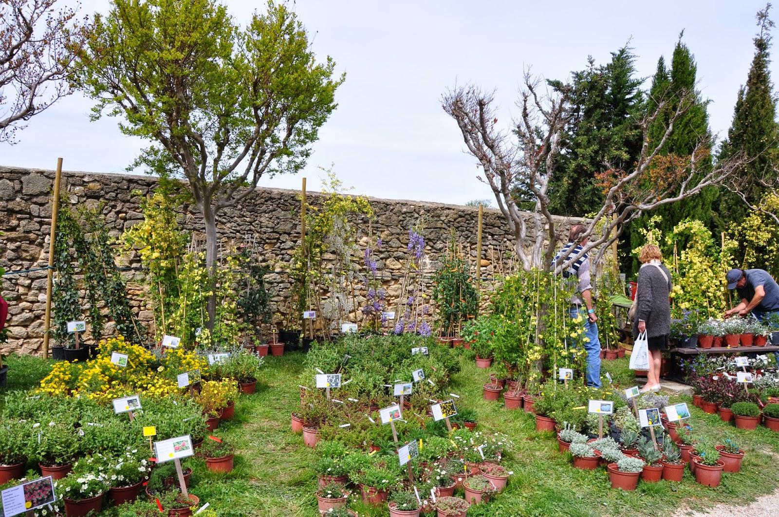 Le jardin du bois joli foire aux plantes s rignan du for Jardin aux plantes