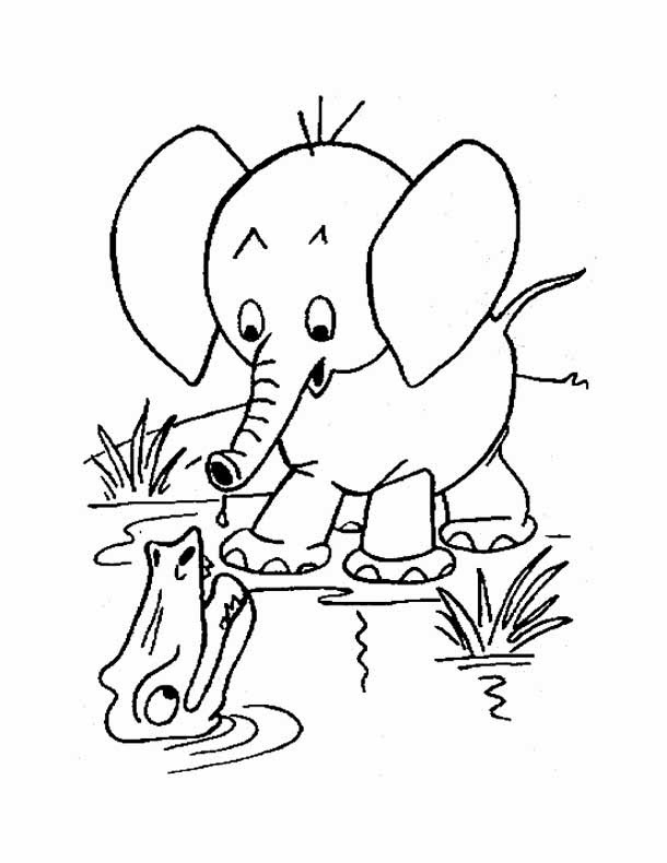 Kids Page Elephant Coloring Pages