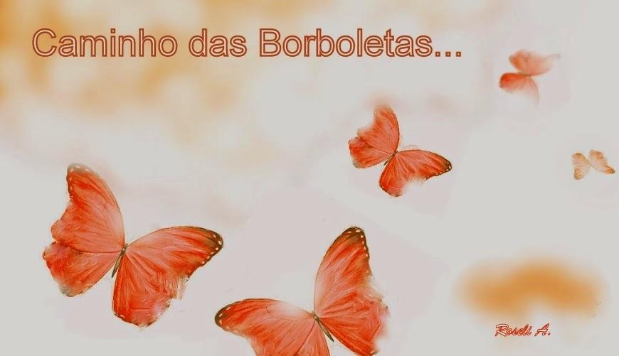 Caminho das borboletas...
