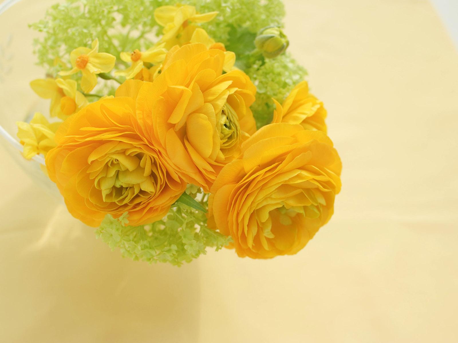 Life Belongs To Life Yellow Roses